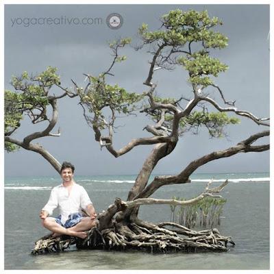 meditation, yoga, mise en forme, sante, wellness, bien etre, aeroyoga, yoga aerien, aerial yoga, fly, flying, bienfaits, france, belgique, luxembourg, suisse, quebeq, nouvelle caledonie, senegal,