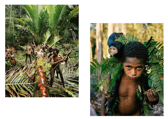 Indonesia phát hiện bộ tộc nguyên thủy sống giữa rừng già