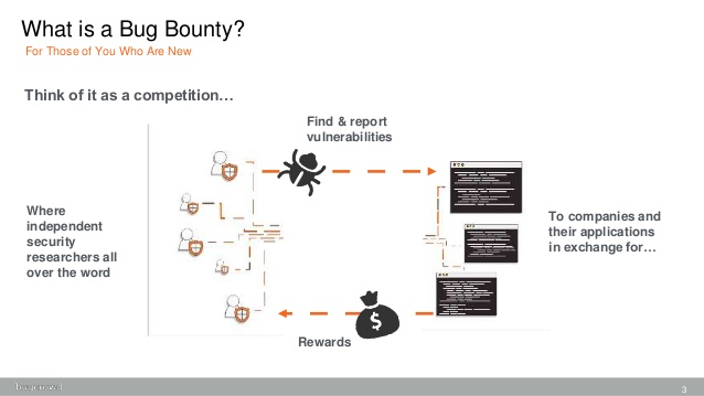 What is bug bounty