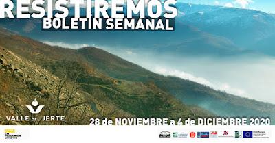 VALLE DEL JERTE, BOLETÍN SEMANAL (28 de noviembre a 4 diciembre 2020)