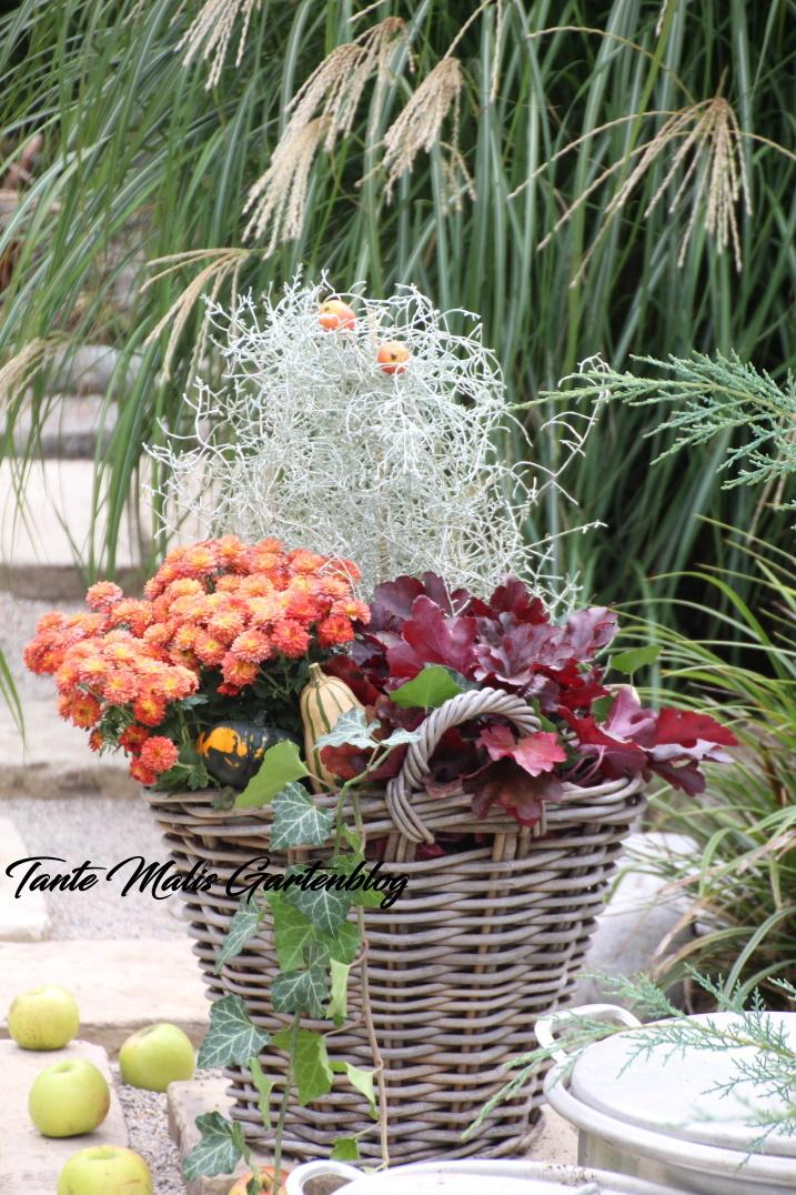 Herbstdekor Garten