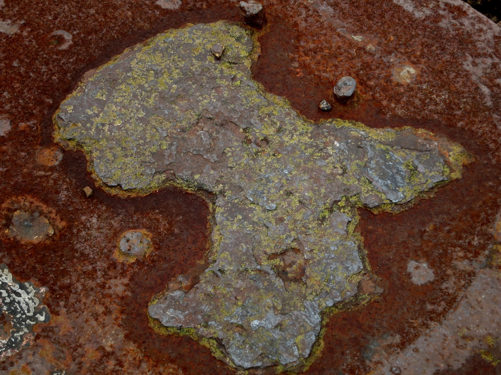 Shape without rust on rusty plate with lichen round the edges.