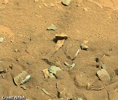 Mars Thigh Bone
