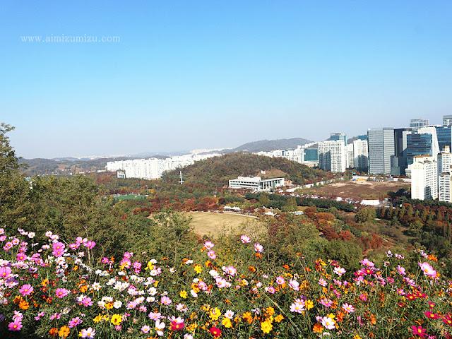 View dari Haneul Park