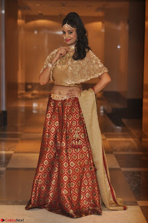 Mehek in Designer Ethnic Crop Top and Skirt Stunning Pics March 2017 007.JPG