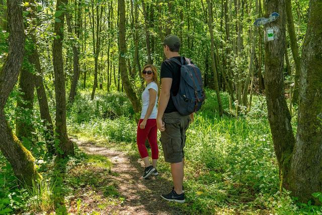 Westerwaldsteig Etappe 6 von Freilingen nach Nistertal  Westerwälder Seenplatte – Stöffelpark 10