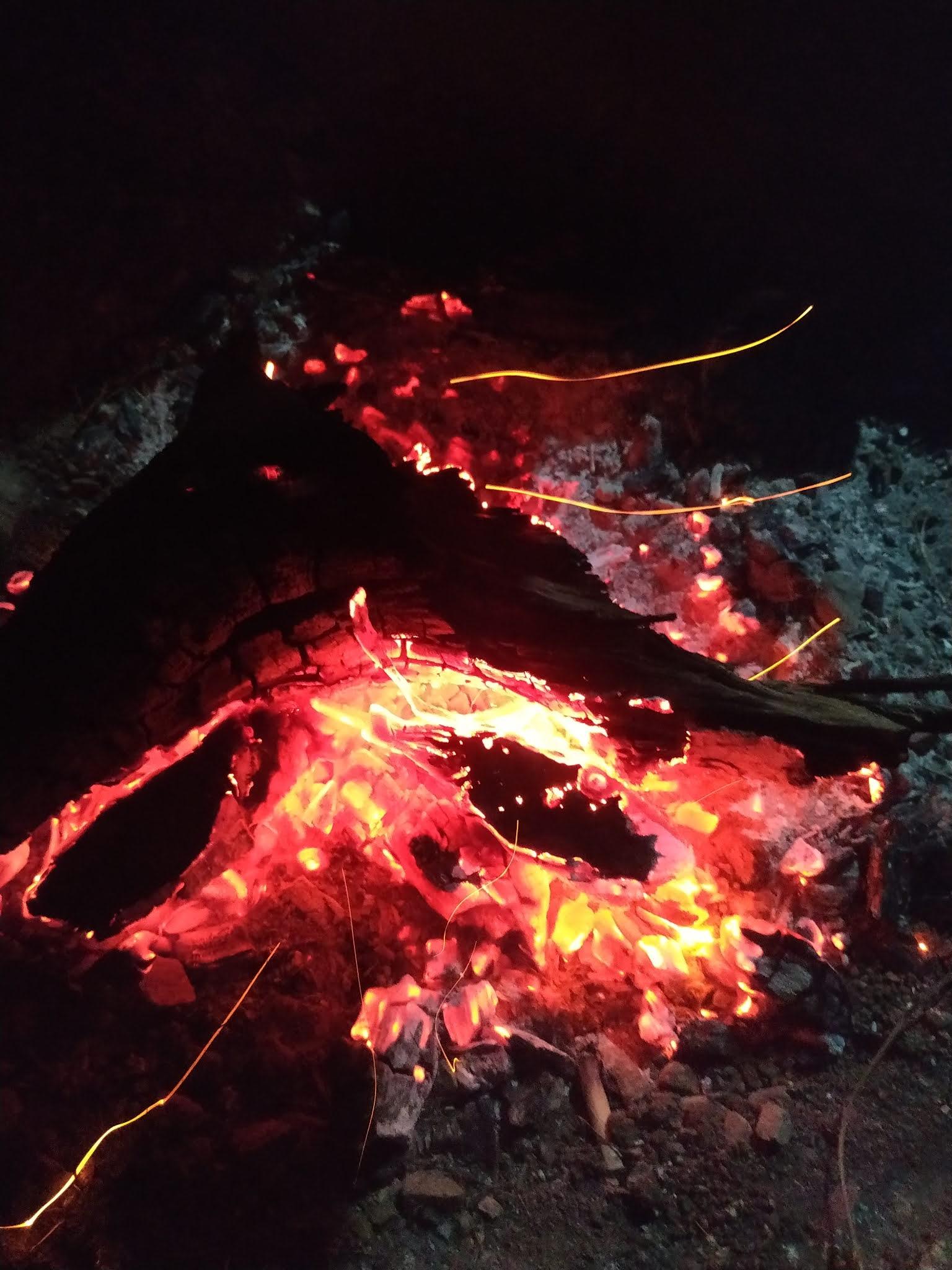 Bonfire at Jungle Camp