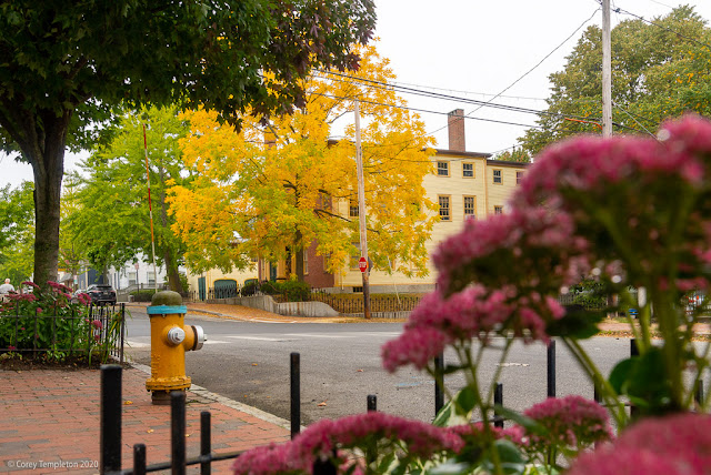 Portland, Maine USA September 2020 photo by Corey Templeton. Fall colors at Brackett & Danforth Streets, from back in September.