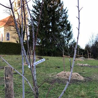 Kirche St. anna, Schondorf am Ammersee