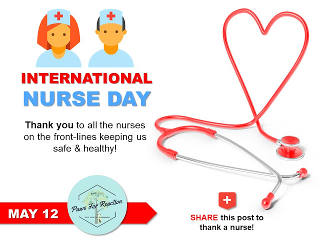 May 12 is International Nurse Day Paws For Reaction Covid-19