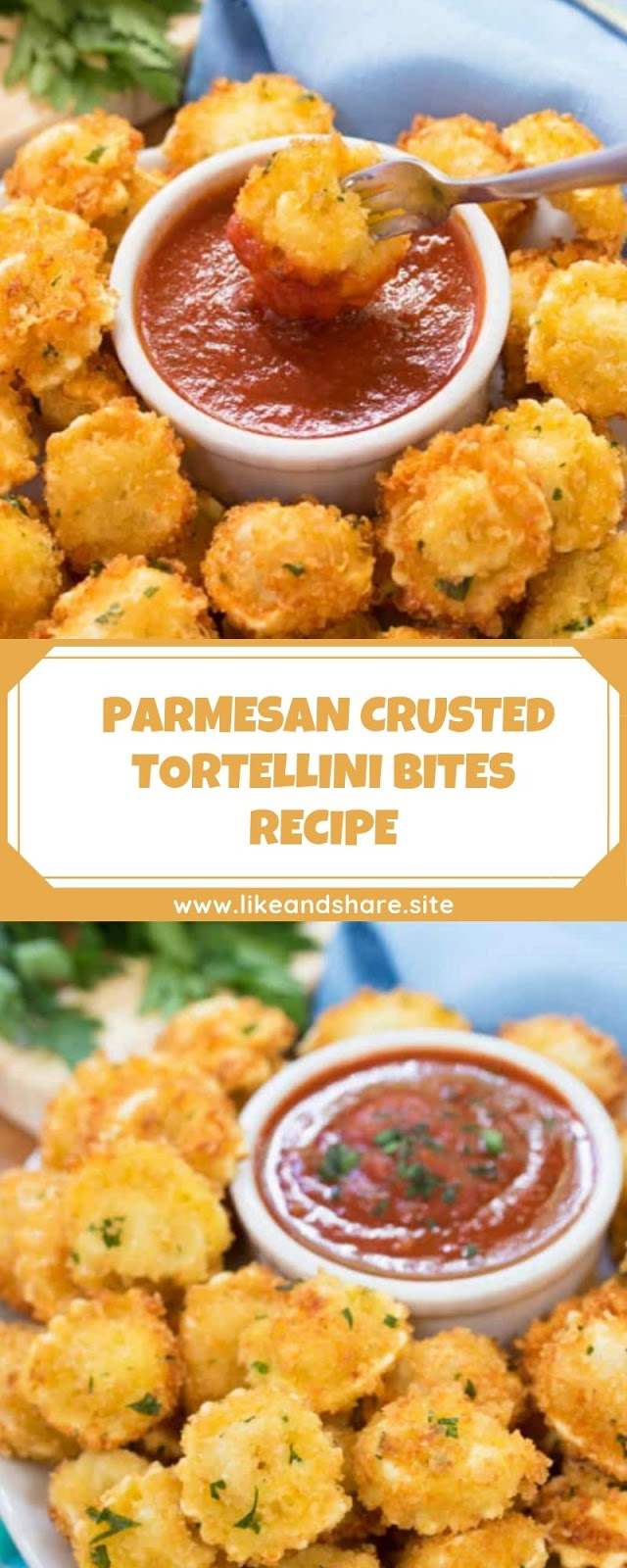 PARMESAN CRUSTED TORTELLINI BITES RECIPE