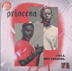 Baixar Musica Princesa - Jall ft. MC Hariel Mp3