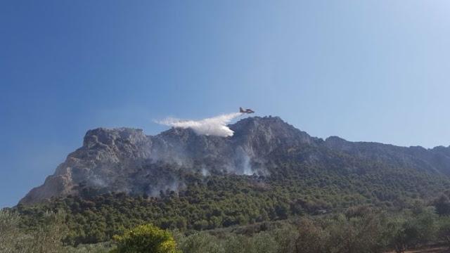 Πυρκαγιά στο Δήμο Νότιας Κυνουρίας