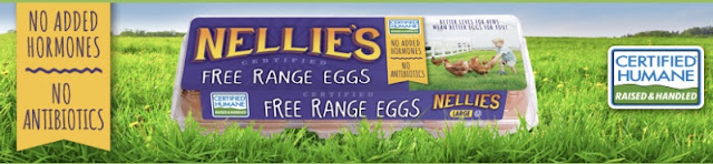 daytodaymoments egg giveaway