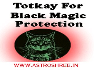 black magic protection totkay by astrologer