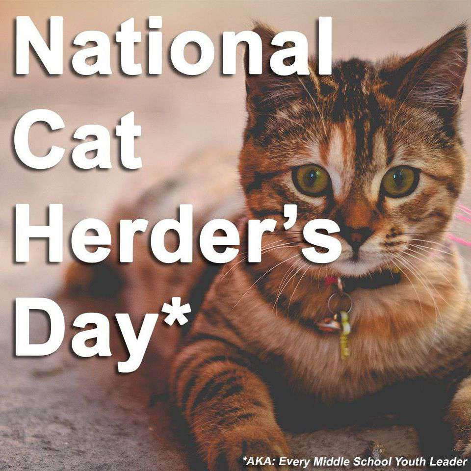 National Cat Herders Day Wishes for Whatsapp