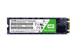 Modulo WD M.2 Green