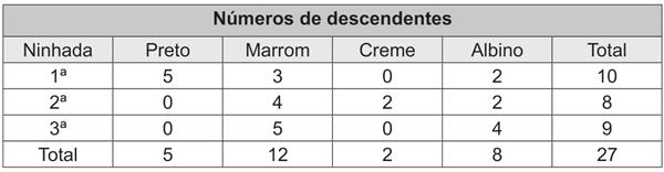 Números de descendentes