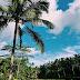 Ausflüge auf Bali zu Reisterassen, dem Wassertempel Pura Tirta Empul, den Königsgräbern in den Felsen Gunung Kawi & Ubud (Erlebnisse während einer Pressereise)