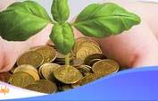 Cara Investasi Reksadana Untuk Pemula Terkini 2021