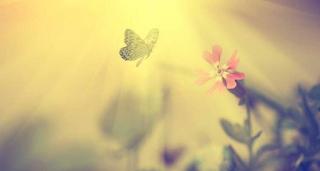 Όταν συγχωρείς κάποιον, γαληνεύεις. Κάνεις χάρη σ' εσένα και όχι σ' εκείνον