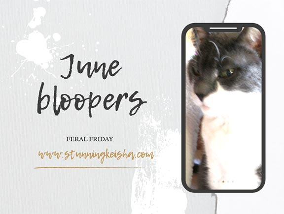 Feral Friday: June Bloopin'