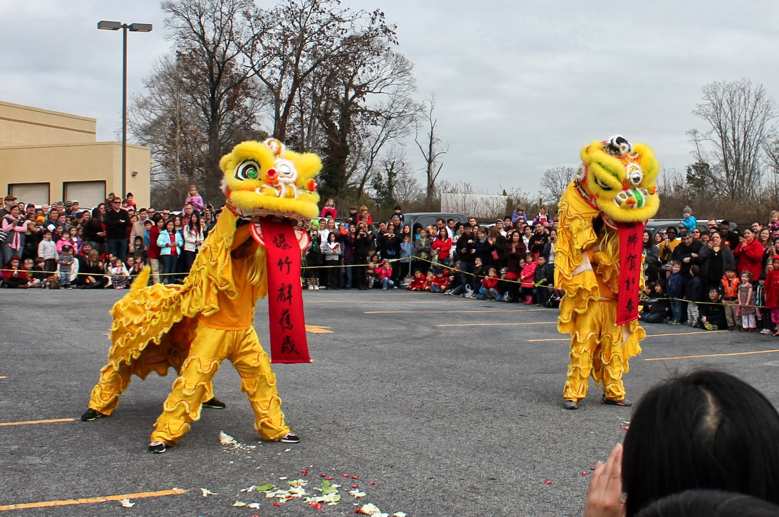 Chinese New Year in Atlanta | Lindsay Eryn