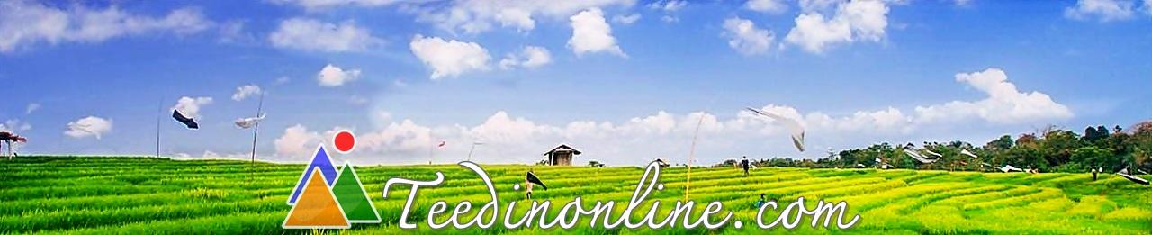 teedinonline.com