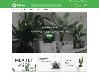 Giao diện website bán hàng cây cảnh chuẩn SEO, tải nhanh, đẹp