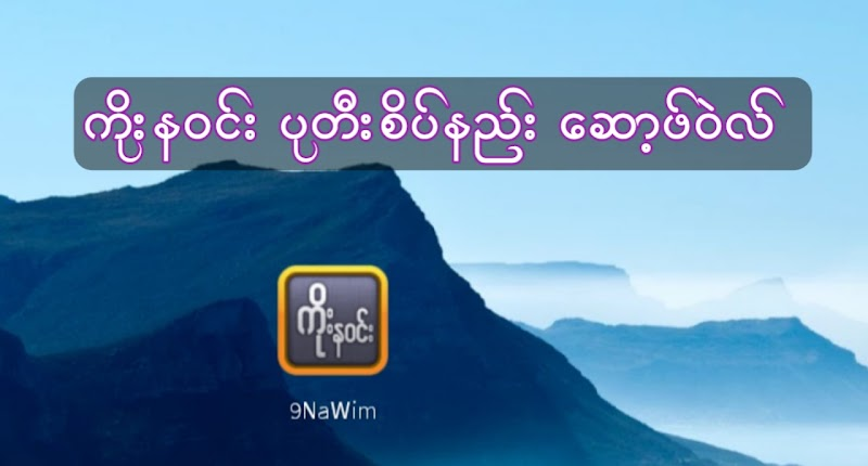 9NaWin Software