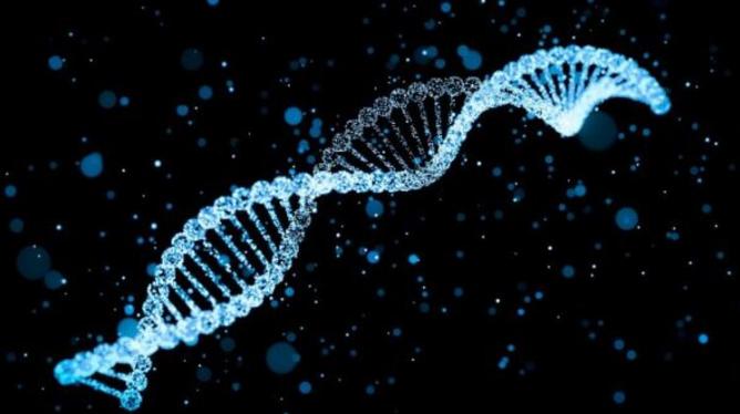 """""""DNA'nı gönder, ırkını öğren"""" yalanı"""