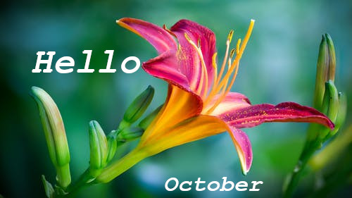 Good Morning Welcome October