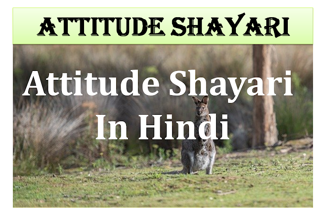 Attitude Shayari, Attitude Shayari in Hindi, Attitude Status, Latest Attitude Shayari, Top Attitude Shayari, Shayari, New Attitude shayari in hindi