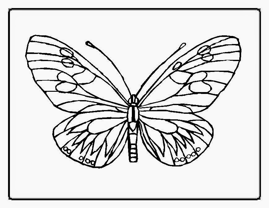 Monarch butterfly coloring pages batman coloring pages for Monarch butterfly coloring page