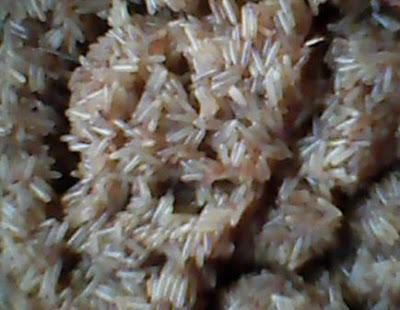 Ternak Jangkrik ialah salah satu usaha budidaya yang dikala ini sedang hits dan ramai diper Order WA 085853147511 Cara Beli Telur Jangkrik 2018, Simpel dan Mudah