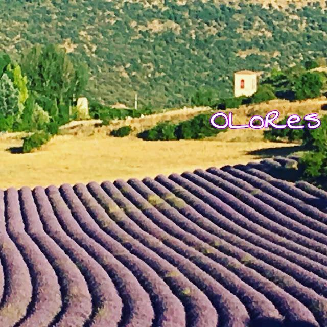 cultivos turismo rural