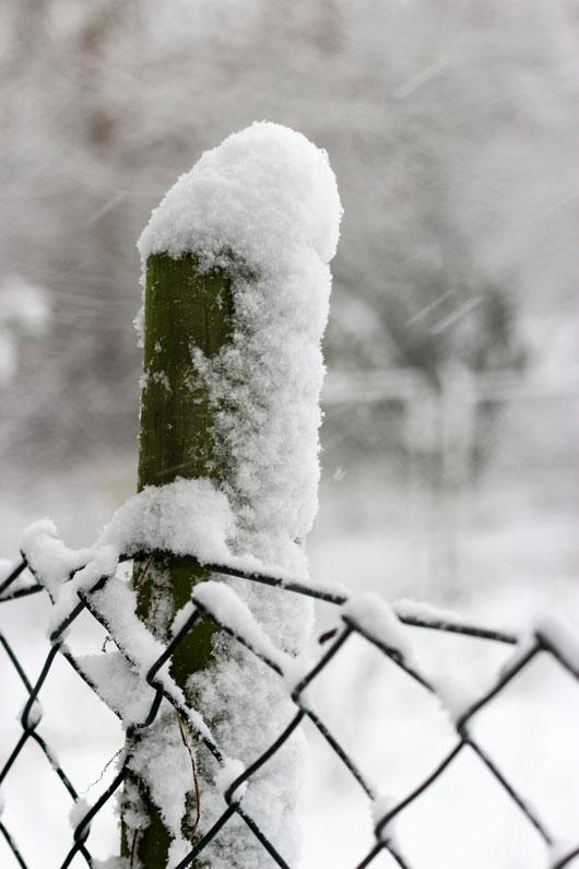 Winter, Moments, Dezember, es schneit