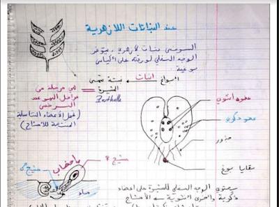 ملخصات النشاط العلمي للمقبلين على مباراة التعليم pdf