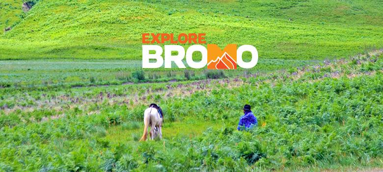 kontak informasi dan reservasi layanan explore bromo