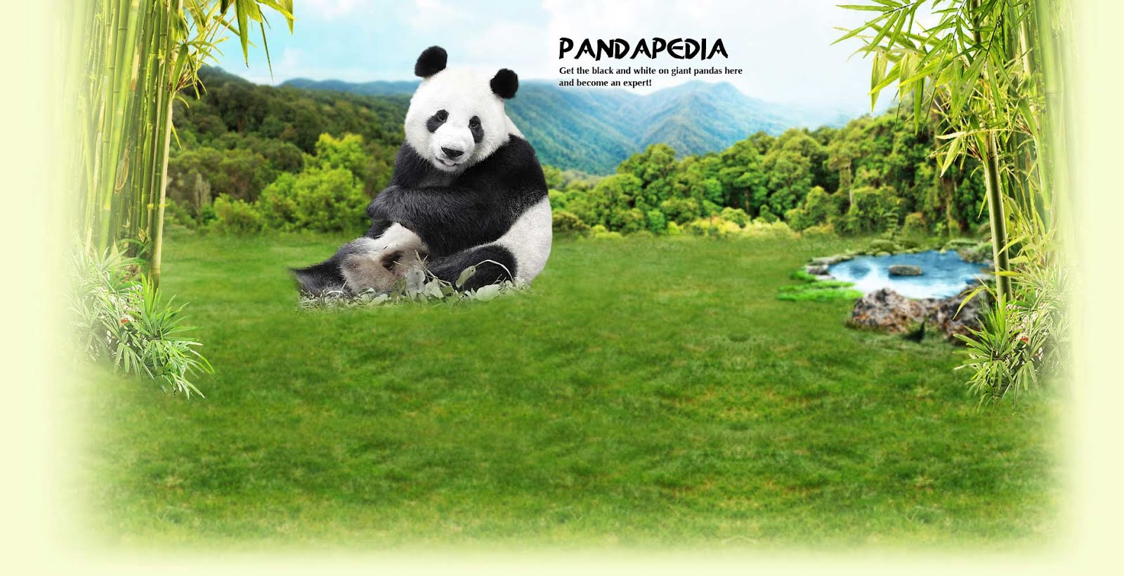 Pandapedia - Get the black and white on giant pandas and become an expert!