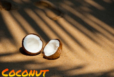 Coconut Best Image