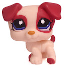 Littlest Pet Shop Small Playset Jack Russell (#1200) Pet