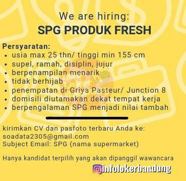 Lowongan Kerja SPG Produk Fresh Bandung Oktober 2019