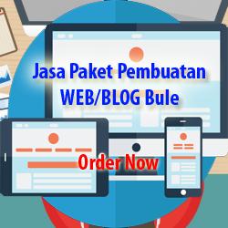 Jasa Paket Pembuatan WEB/BLOG Bule Murah dan berkualitas