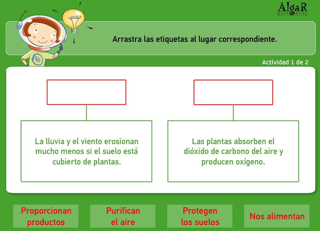 http://www.primerodecarlos.com/TERCERO_PRIMARIA/archivos/actividades_natura_tercero/7/3.swf