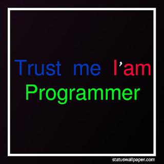 programmer status for whatsapp