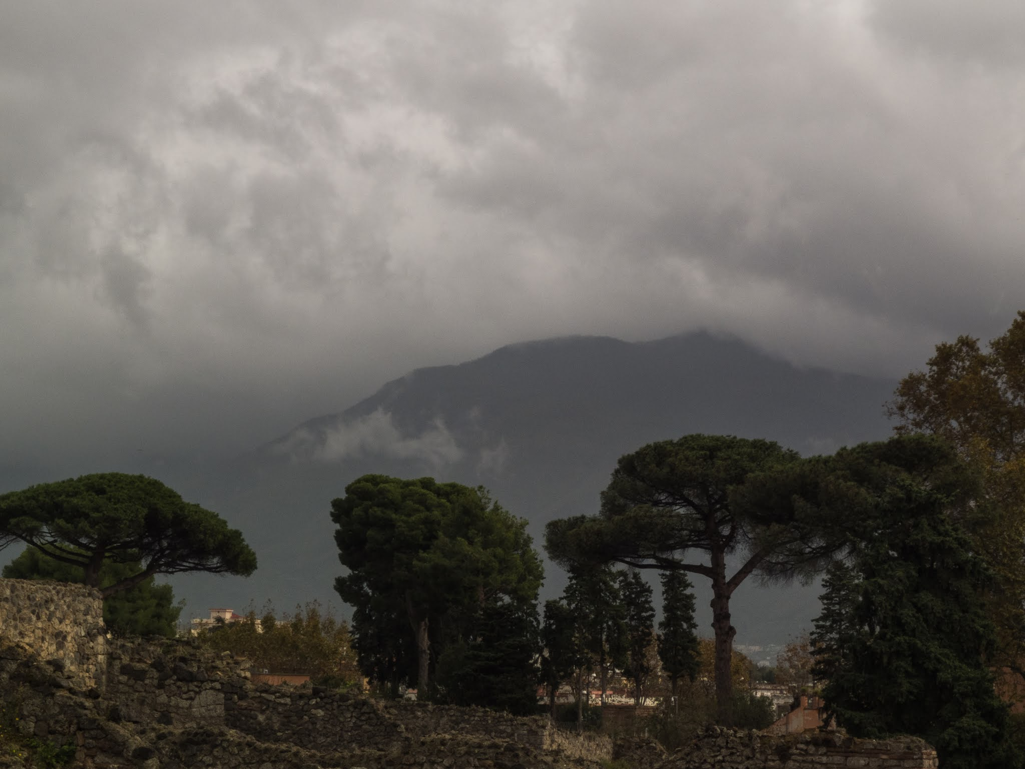 Evergreen trees in the ancient city of Pompeii with Mount Vesuvius in the background on a cloudy day.