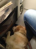 En el poco espacio del avión