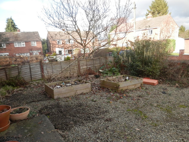 Diary of a suburban permaculture (ish) garden, Winter 2017-18. By UK garden blogger secondhandsusie.blogspot.com #gardenblogger #suburbanpermaculture #ediblegarden #organicgarden #suburbangarden