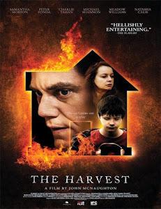 El Sustituto / La Cosecha / The Harvest